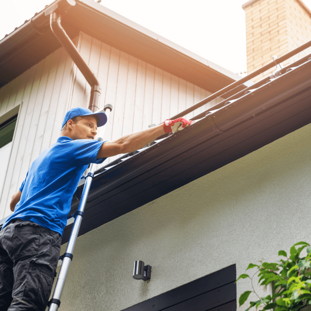 Home - window and gutter cleaning
